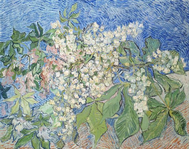 BUHRLE Noyer en fleurs VAN GOGH.jpg