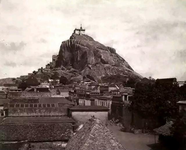 TRIPE Linnaeus The Rock Fort.png