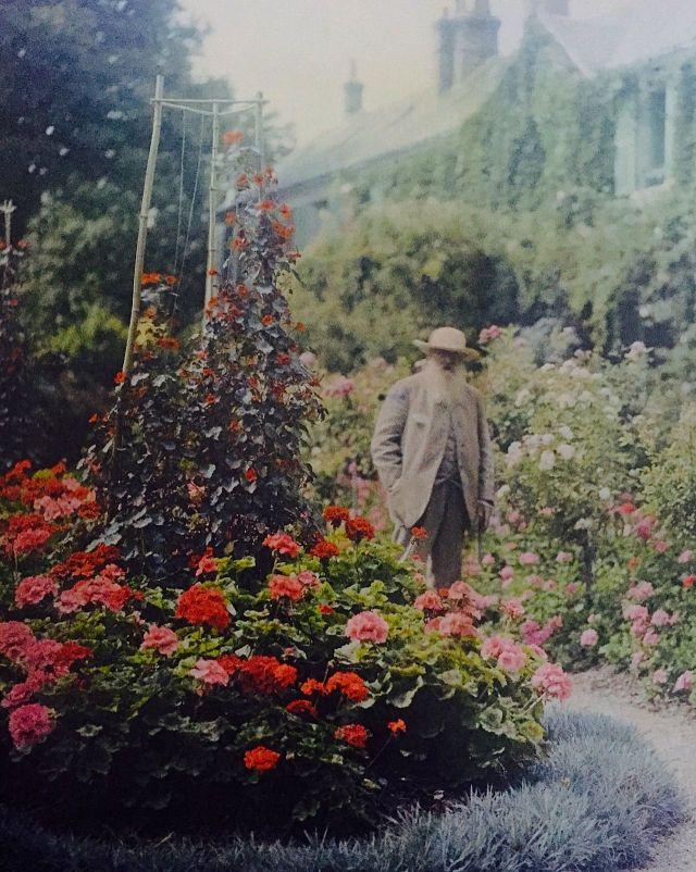 JARDIN Monet photo
