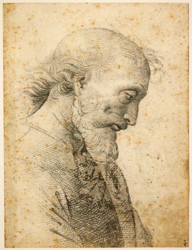 RAPHAEL Buste d'homme Pietro VANUCCI dit le PERUGINO