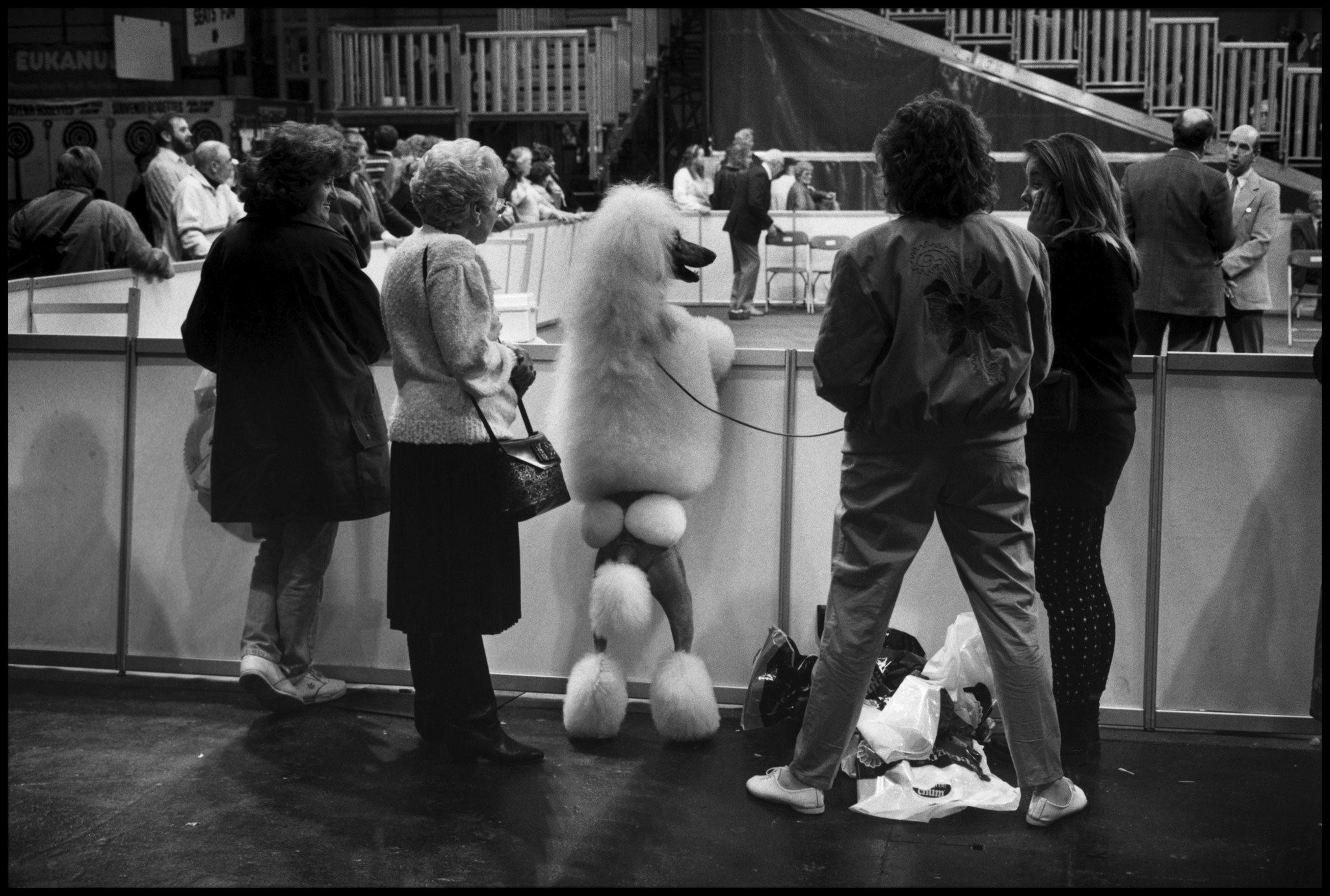 ERWITT Dog birmingham 1991